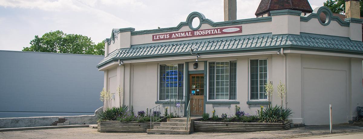 Lewis Animal Hospital Cincinnati Ohio 45215 Gt Home